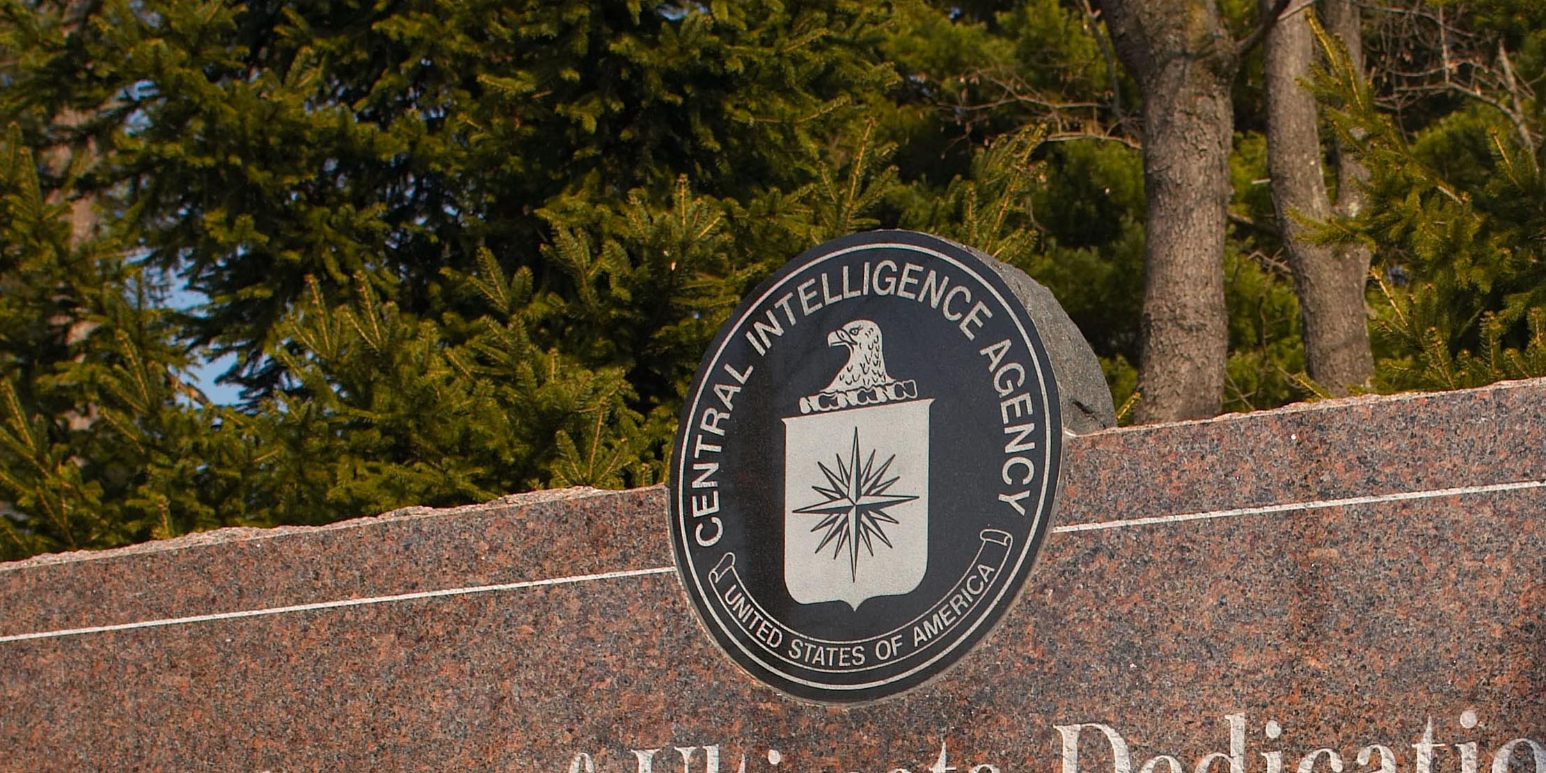 A former CIA employee who authorities say leaked a trove of data to WikiLeaks that came to be known as 'Vault 7' has been indicted by a federal grand jury.