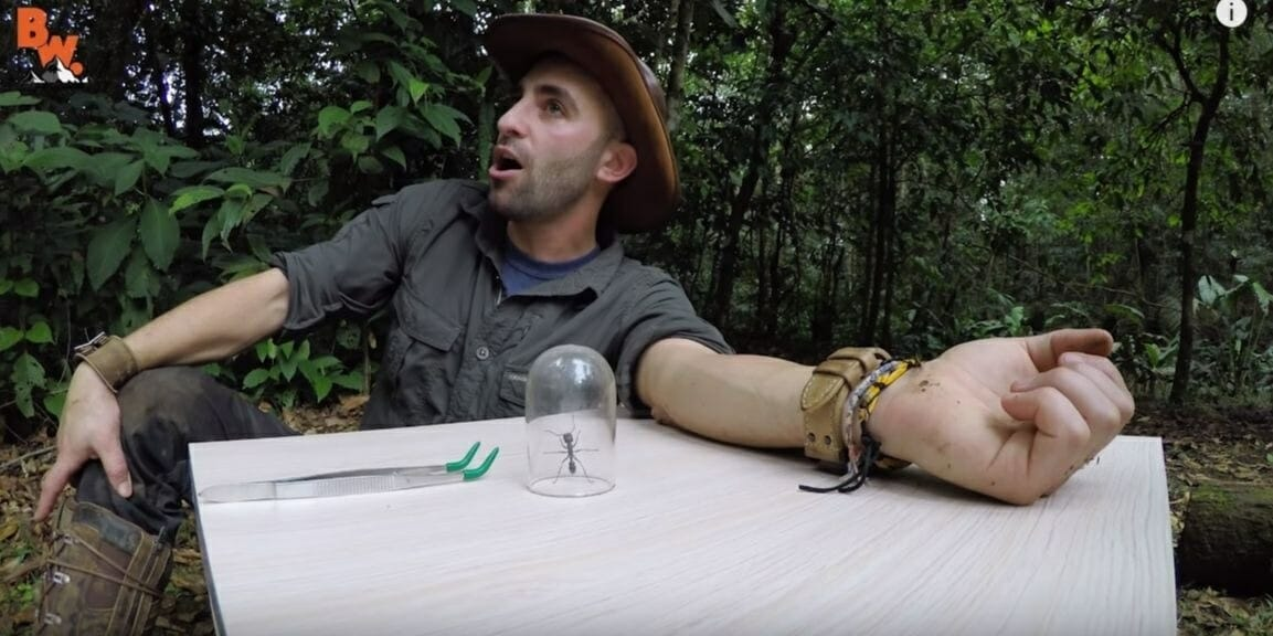 Coyote Peterson YouTube