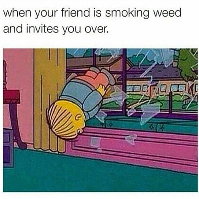 best weed memes