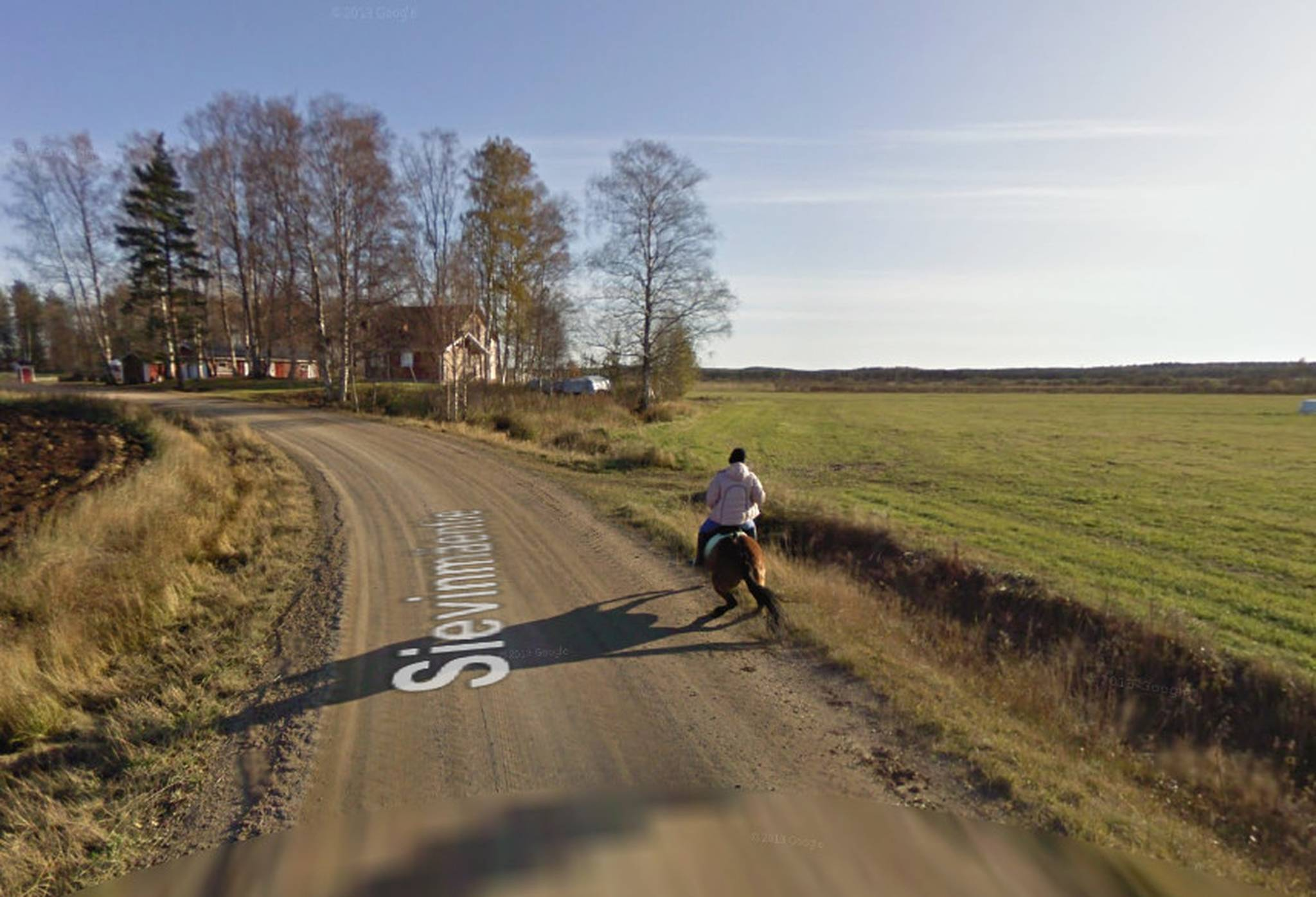 google street view car scares horse
