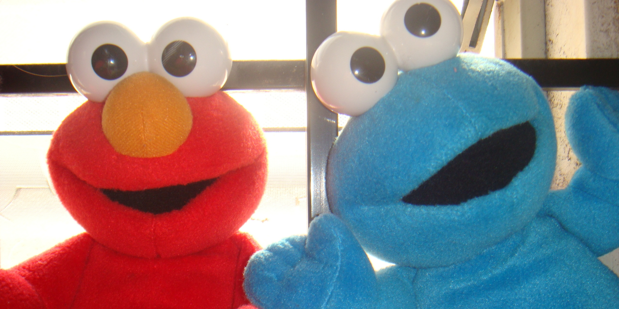 elmo and cookie monster toys have nsfw fun when left in a